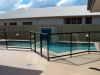 black frame glass fencing around pool lifestyle solutions