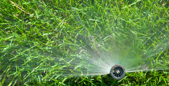 Lifestyle Solutions Centre irrigation