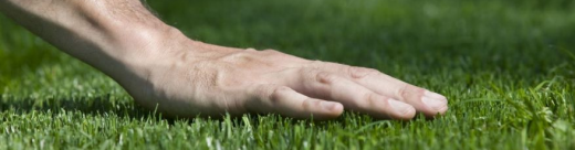 Lifestyle Solutions Centre synthetic Turf